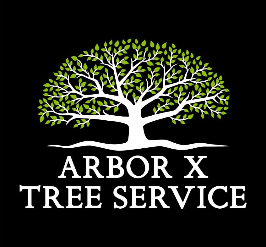 Arbor-x-Business-logo-TO-USE-IN-HEADER
